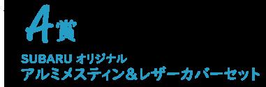 SUBARU オリジナル アルミメスティン&レザーカバーセット
